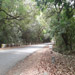 Kas Pathar Sceneries of Roads7